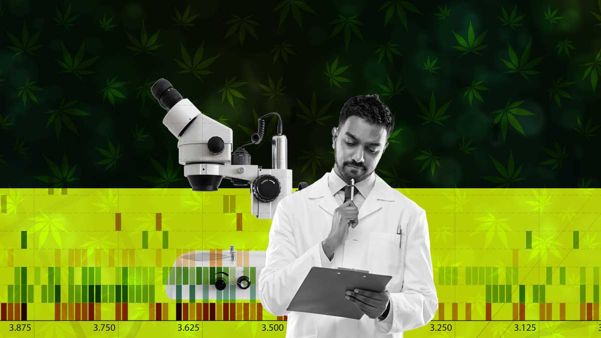 What is the Current Landscape of CBD Testing?