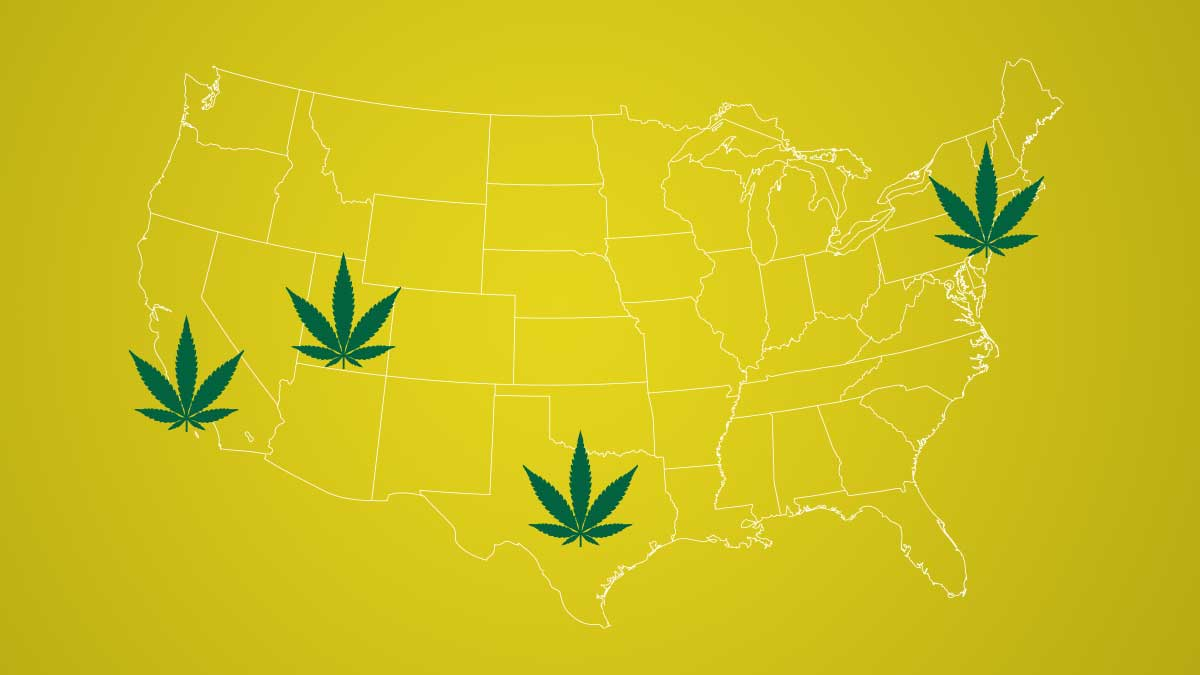 In Review - February 2020 in Cannabis News