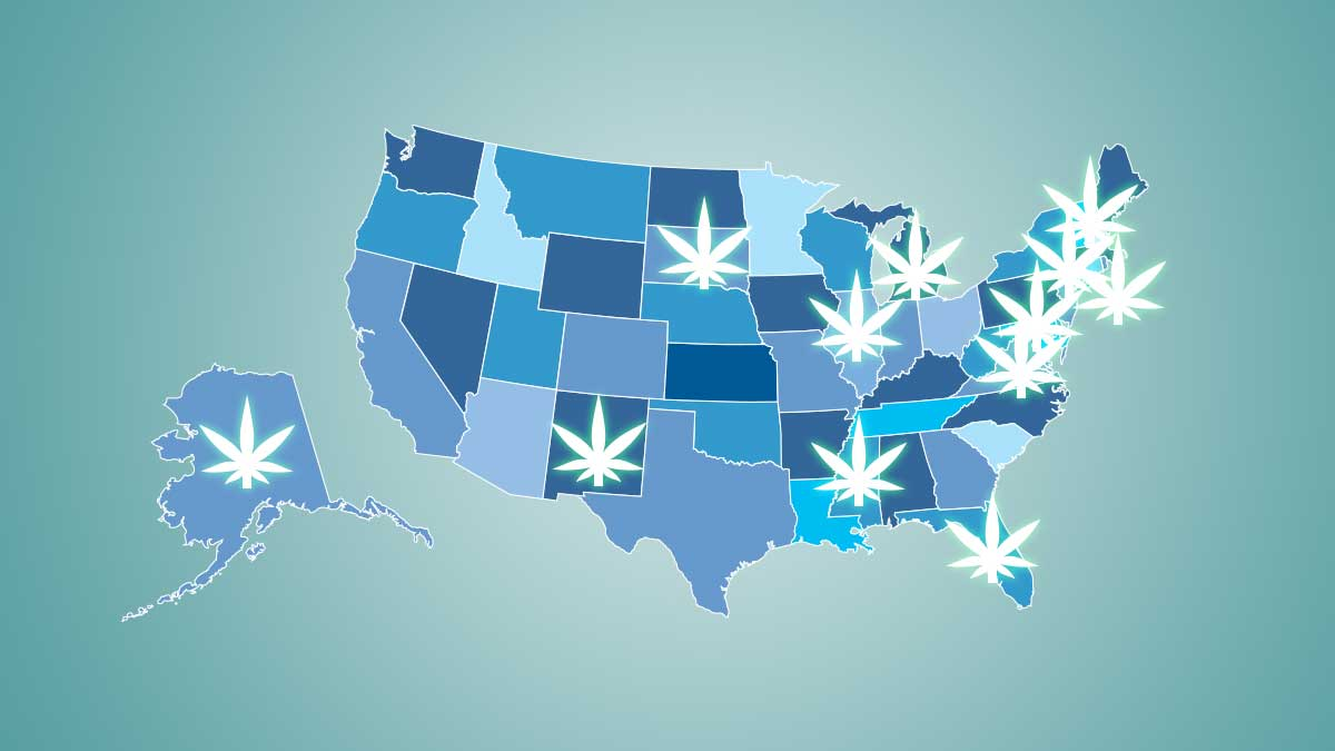 The State of Cannabis: A breakdown of where certain states stand right now